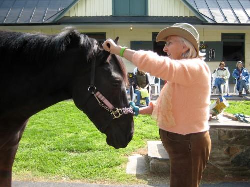 Linda Tellington-Jones shows my mare, Maira, how good ear TTouch feels