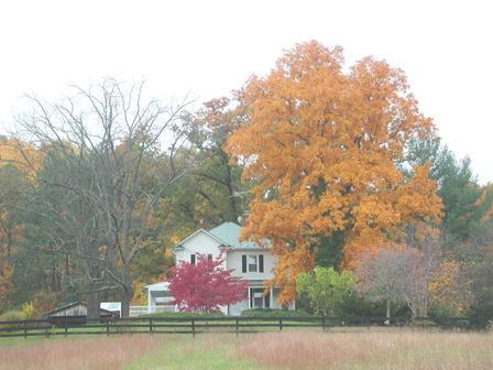 Burnt Mountain Farm in October