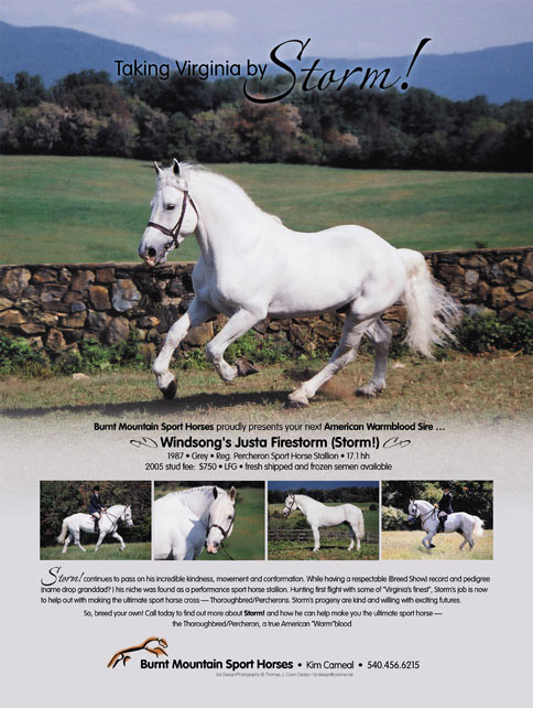 one of many stallion issue magazine advertisements