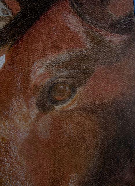 Pastel by Sandy Clark: Berlin (Lori Skoog's Horse)