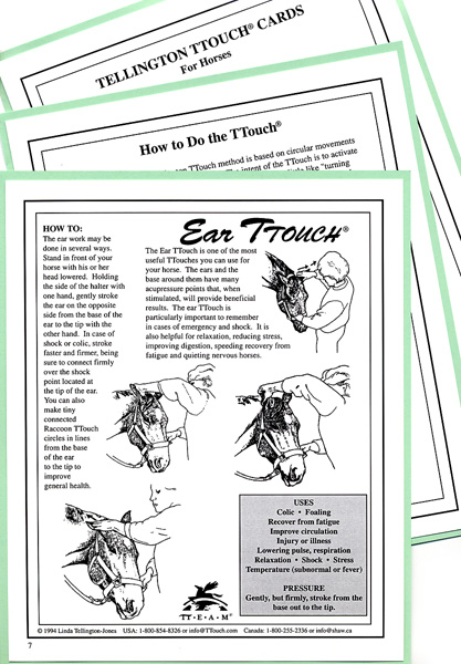 TTOUCH Cheat cards. TTouch Cards give an illustration and description of each TTouch and can be laminated for use outdoors. Vital for working on horses when it's not convenient to refer to a book or video. 15 cards.