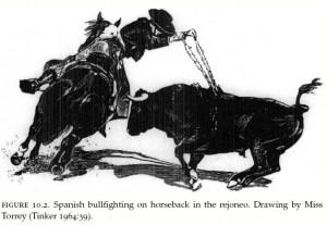 Torrey bullfight