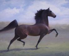 Morgan, courtesy horseandhound.co.uk