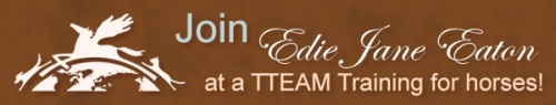 ejeTTEAM