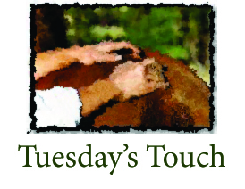 Tuesday's Touch1 with title
